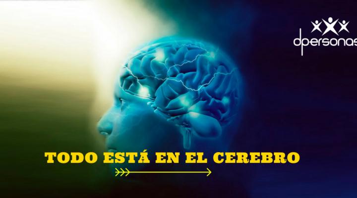 Todo está en el cerebro